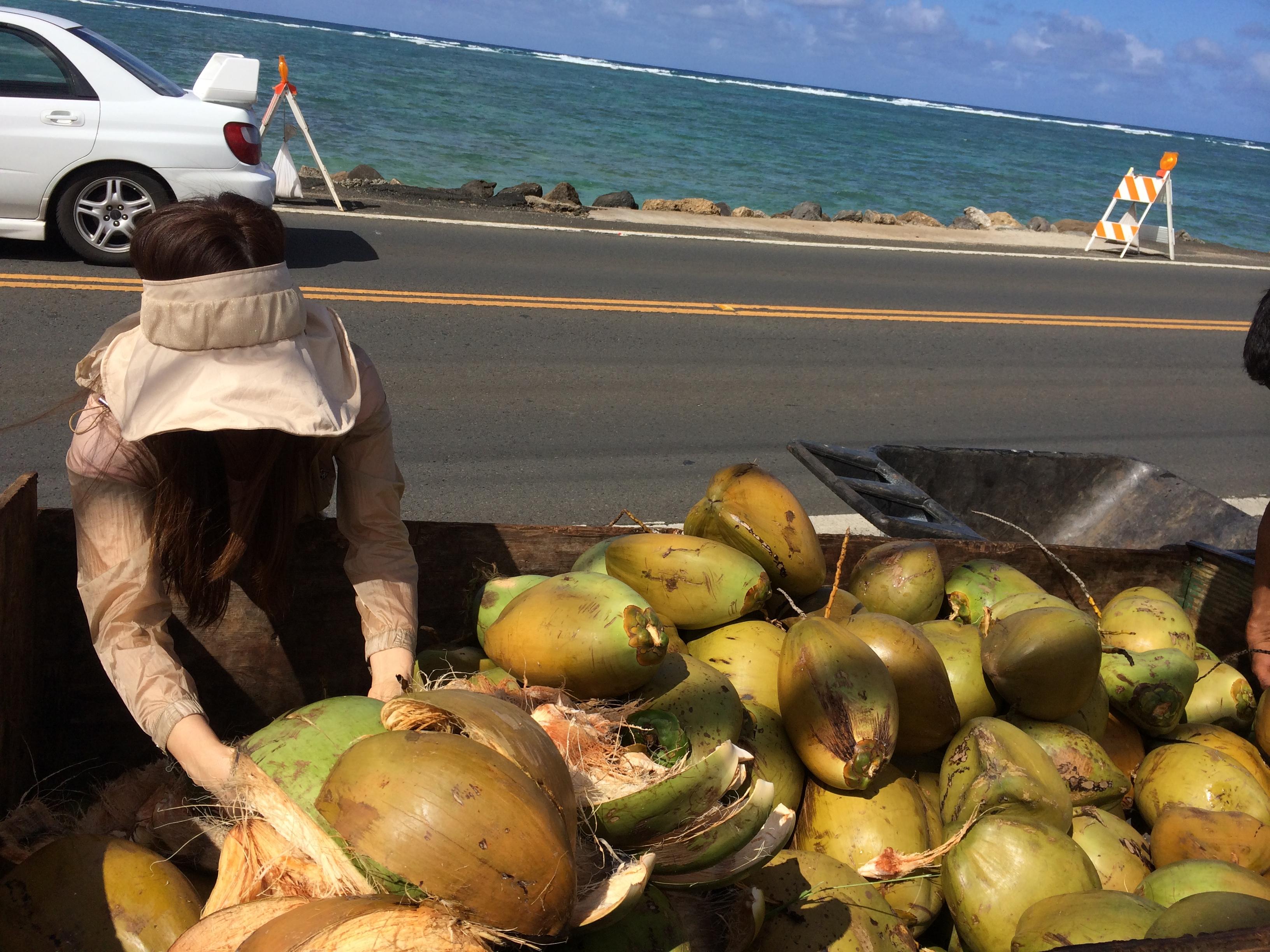 Shaka-Coconut